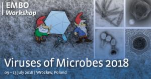 Viruses of Microbes